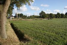 222 - 7483 Halleweg, Sint Jansklooster