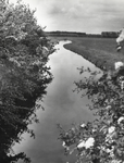 FOTO-000009 Dobbewatering vanaf Papelaan richting Leidschendam, 1965