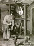 1682 Het beslaan van een paard: Gerardus Wilhelmus Verhoeven in de hoefstal, ca. 1965