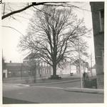 577745 Koningsplein, 1960