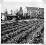 265069 Het tuinhok van broeder Piet, met zicht op de groentetuin achter het klooster te St. Agatha