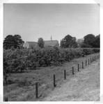 265071 Tuintje van Sluis, met zicht op de boomgaard in de kloostertuin te St. Agatha