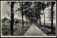 Drie fietsers op de Eikenlaan (niet meer bestaand)