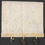CHV-777 Brief van keurschepenen der landvierschaar te Veere. Overdracht van eene hofstede met 34 gemeten 23 roeden ...