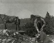 B-945XV Personeel van Gemeentereiniging op de stortplaats op een weiland in de omgeving van Middelburg.Origineel ...