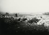 B-955IV Personeel van Gemeentereiniging op de stortplaats op een weiland in de omgeving van Middelburg.Origineel ...