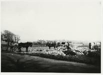 B-955XII Vuilniskarren op de stortplaats op een weiland in de omgeving van Middelburg.Origineel diapositief archief ...
