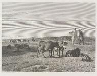 H-19-B Fantasievoorstelling van Norbertijnen uit de Abdij van Middelburg, die vee weiden in de duinen van Walcheren, ...