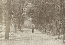1772 Gezicht in een weg in het bos in de duinen te Haamstede, met een postbode of boswachter