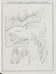 536 Ontwerp van de voorgeschreven versiering op het ambtscostuum van de leden van de Ridderschap van Zeeland