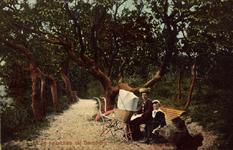 10361 Een moeder met zoon en kinderwagen op een bankje in de bossen bij Oostkapelle