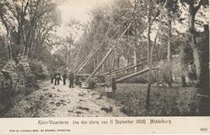 1958 Ontwortelde bomen op Klein Vlaanderen/Gedempte Achtergracht te Middelburg