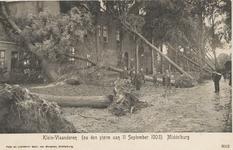 1959 Ontwortelde bomen bij het Oudemannenhuis op Klein Vlaanderen/Gedempte Achtergracht te Middelburg