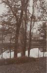 2064 Gezicht vanaf het Noordbolwerk te Middelburg door de bomen op het begin van de Noordweg