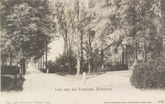 2245 Gezicht in de laan naar de Tramsingel te Middelburg