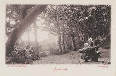 406 Het bos bij Domburg