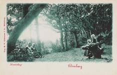 407 Het bos bij Domburg