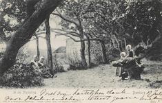 408 Het bos bij Domburg