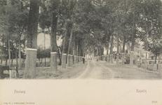 5593 Gezicht op de Postweg in Kapelle, met bomen die zijn voorzien van witte geschilderde banden