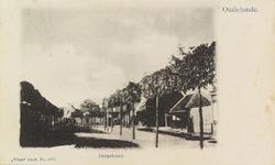 5735 Gezicht op de met leilinden beplante Dorpstraat in Oudelande