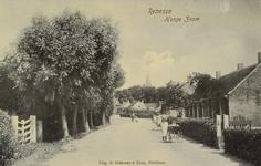 6568 Gezicht op de Hoge Zoom in Renesse, in de richting van de dorpskern