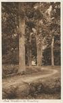 701 Bomen in het park van kasteel Westhove bij Oostkapelle
