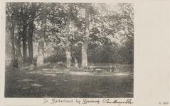 713 Gezicht op de bossen bij huize Berkenbosch te Oostkapelle