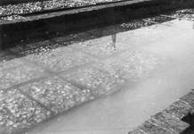 BRU-2810 Bruinisse. Haven. Oesters van Abr. J. v.d. Berg in de verwaterputten bij de haven