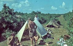 RK-2059 Renesse. Kamp van de Jeugdbond voor Natuurstudie (NJN).