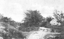WA-1067 Renesse. Oude Moolweg (thans nr. 23). In 1933 nog onverharde duinweg naar het strand. Zowel links als rechts ...