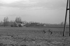X-5087 Zonnemaire. Stapelsweg. Een woonhuis in de Stapelsweg, met op de achtergrond de boerderij van de fam. de Vlieger ...