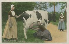 KLD-P-210 Een vrouw en twee meisjes in Walcherse dracht aan het koeien melken