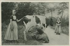 KLD-P-211 Een vrouw en twee meisjes in Walcherse dracht aan het koeien melken