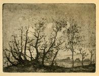 3685 [Bomen]