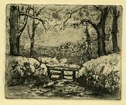 3687 [Weiland met bomen en hek]