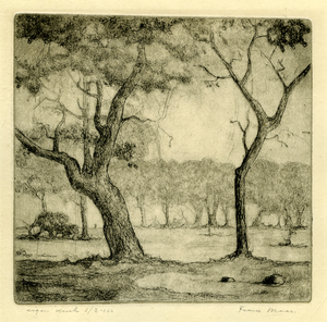 3756 [bomen]