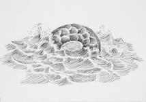 4020 [Stoorworm in de golven]