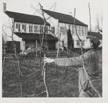 M 12128 Mogelijk de land- en tuinbouwschool in Kesteren
