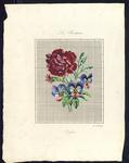8206 De voorstelling op dit borduurpatroon bestaat uit een roserode anjer en anjerknop en drie blauwgeelrose viooltjes, ...