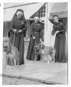 102047 Zusters nemen deel aan een hondenshow