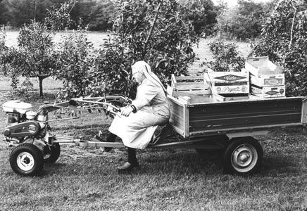 200012 Gemotoriseerde tuinarbeid in de priorij te Heesch