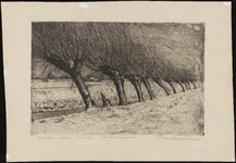 SPUIJBROEK_030 De polder van Nieuw-Helvoet met knotwilgen langs de sloot, ca. 1945