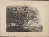 SPUIJBROEK_031 Boom in de tuin van de pastorie van Nieuw-Helvoet, ca. 1935