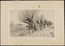 SPUIJBROEK_049 De polder van Nieuwenhoorn met knotwilgen langs de sloot, 1946