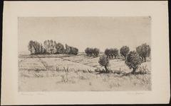 SPUIJBROEK_060 Landschap met boerderij op Voorne, ca. 1940