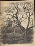 SPUIJBROEK_A_115 Kijkje op de kerk van Nieuw-Helvoet, met een grote boom op de voorgrond, ca. 1955
