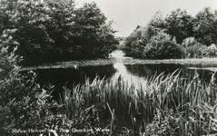 PB4359 Het Quackjeswater, 1949