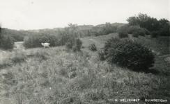 PB4421 Duingezicht, ca. 1930