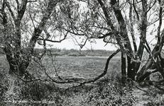 PB4425 Het Quackjeswater, ca. 1966