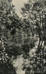 PB4431 Het Quackjeswater, 1955
